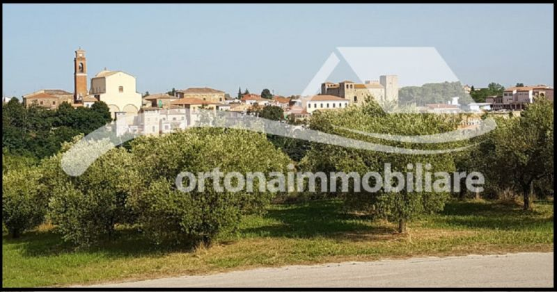 Ortonaimmobiliare - Offer for sale farmhouse in suggestive Borgo with panoramic view Italy