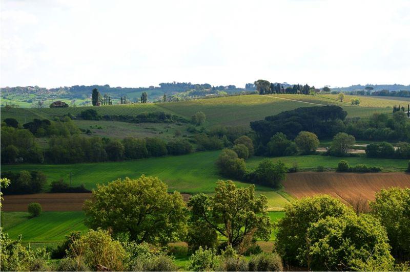 Offerta Last minute in Toscana