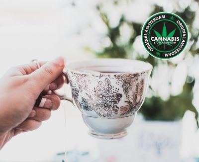 cannabis store amsterdam famagosta offerta tisana canapa promo infuso rilassante cannabis