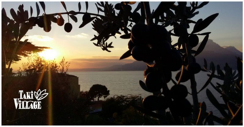 Taki Village offerta vacanza Lago di Garda - Occasione villaggio turistico Brenzone Sul Garda