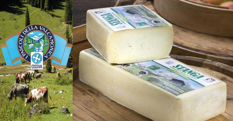 offerta STANGA formaggio tipico Vallecamonica - occasione produzione formaggi tipici italiani