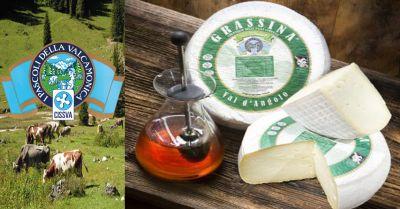 offerta formaggio tipico grassina val dangolo occasione produzione formaggi tipici italiani