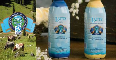 offerta vendita latte vallecamonica occasione produzione formaggi tipici vallecamonica