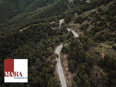 offerta realizzazione asfalti promozione realizzazione opere stradali