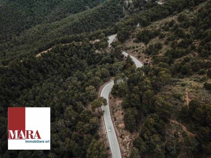offerta realizzazione asfalti-promozione realizzazione opere stradali