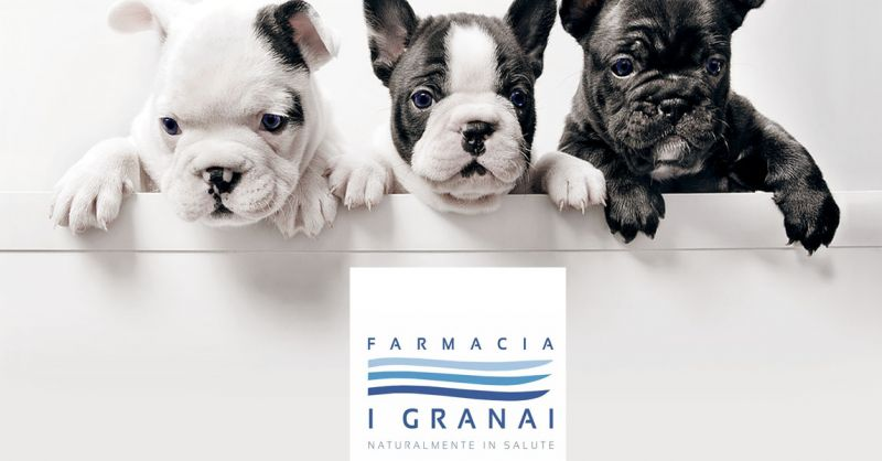offerta vendita prodotti veterinari Roma - occasione farmaci veterinari Roma Farmacia Roma
