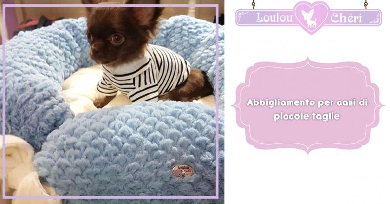 Offerta vendita abbigliamento per cani piccole taglie Torino - Loulou Cheri