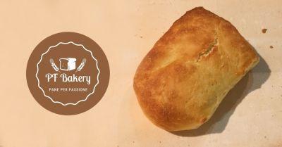 offerta ciabattine di sargolla calde montesarchio promozione pane grano saragolla