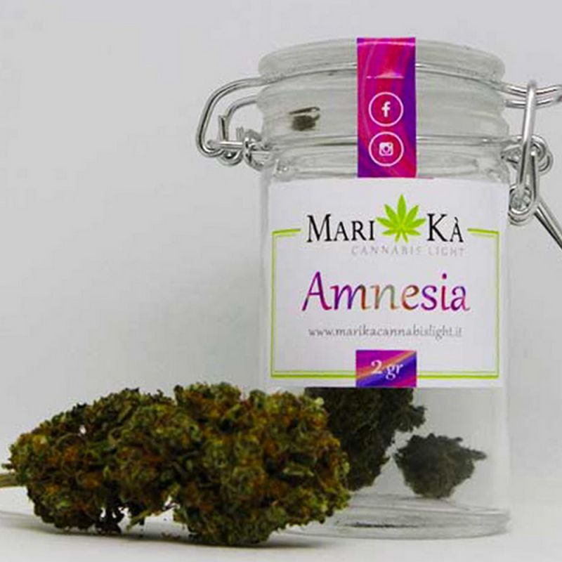 CANNABIS LIGHT - AMNESIA ANCONA