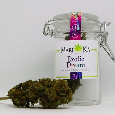 cannabis light exotic dream ancona
