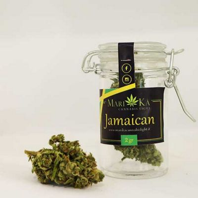 cannabis light ancona