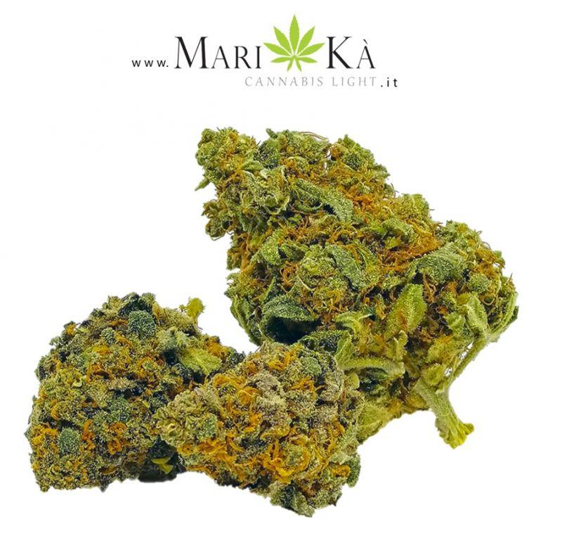 Offerta Marijuana Light Senigallia - Occasione Cannabis Light Senigallia