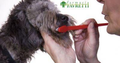 farmacia offerta prodotti veterinari occasione antiparassitari e medicinali per animali agordo