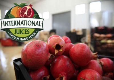 offerta spremuta melograno made in italy promo succo di frutta alla melagrana succo naturale