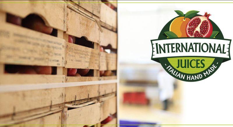 Offerta succo di frutta naturale calabria spremuta arancia pompelmo limone bergamotto mandarino