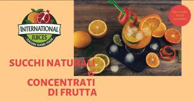 international juices offerta succo di frutta calabrese promozione preparati frutta calabresi