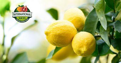 international juices offerta concentrati e preparati di limone promozione fornitura personalizzata semilavorati per industria alimentare