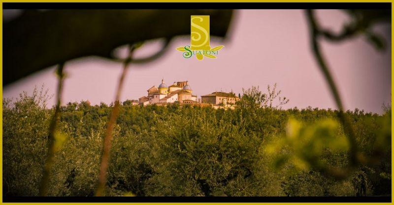 FRANTOIO SUATONI - oliepressen byder på håndværksproduktion af Umbria ekstra jomfruolivenolie