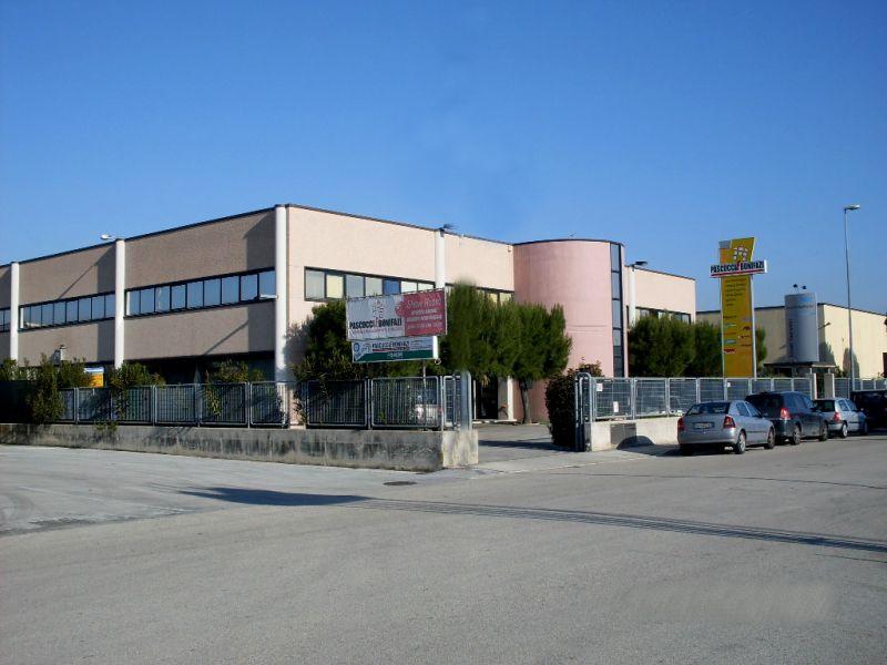 Pascucci e Bonifazi offerta vernici e pitture - promozione parquet Macerata