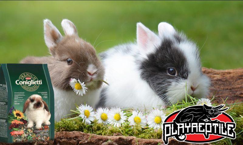 Promozione cibo per coniglio nano bari molfetta - offerte mangime Padovan Premium