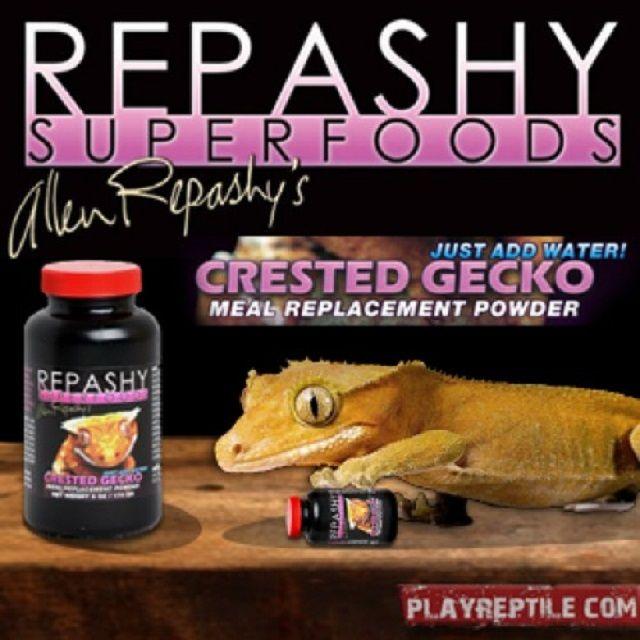 Promozione cibo per GECKO bari molfetta - offerte Repashy Crested Gecko