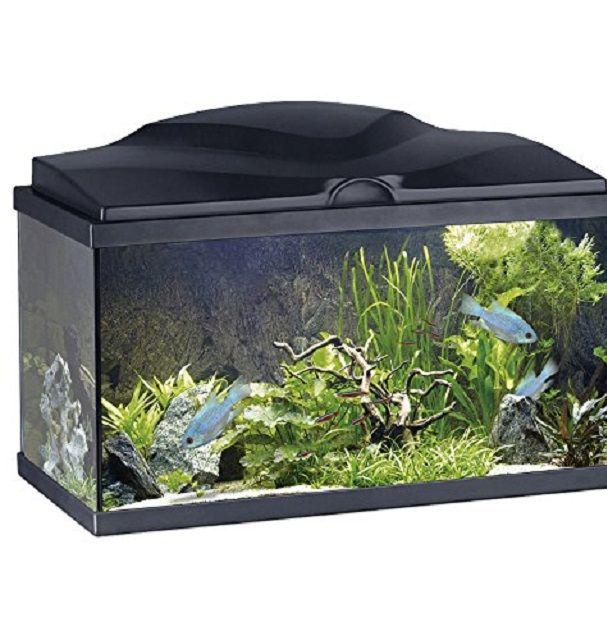 promozione acquario fishome in offerta ebay