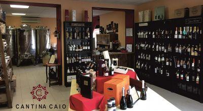 cantina caio offerta vendita vino sfuso e birra artigianale