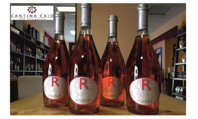 cerca dove comprare del buon vino rosato novara