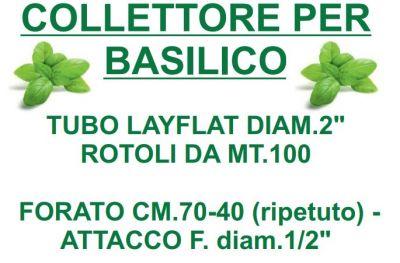 offerta vendita collettore basilico flor system sas albenga