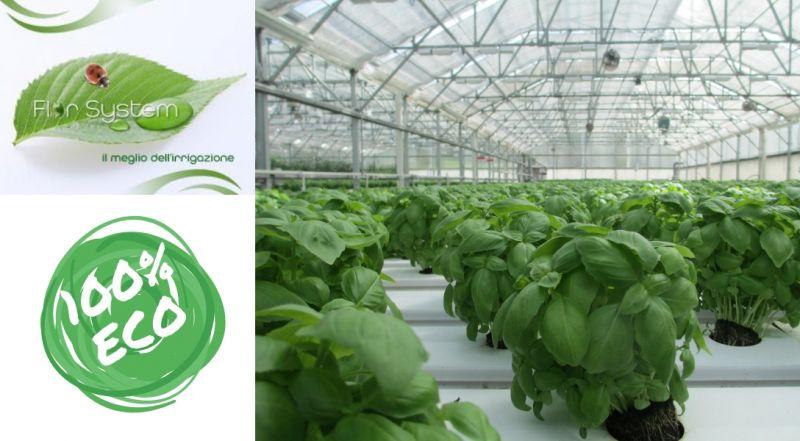 Flor System - occasione impianto irrigazione basilico - offerta collettore basilico - Albenga