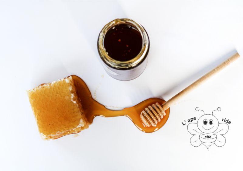 L'APE CHE RIDE DI BIDOJA ELENA offerta miele di castagno - promozione miele italiano