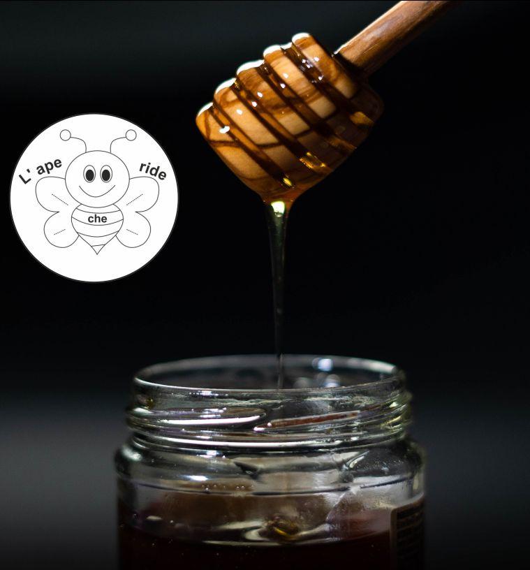 L'APE CHE RIDE DI BIDOJA ELENA offerta miele italiano di acacia - promozione miele di castagno