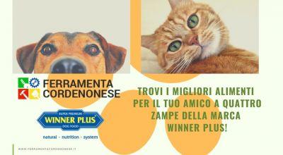 vendita alimenti per gatti e cani winner plus a pordenone occasione vendita di una vasta gamma di alimenti completi a pordenone