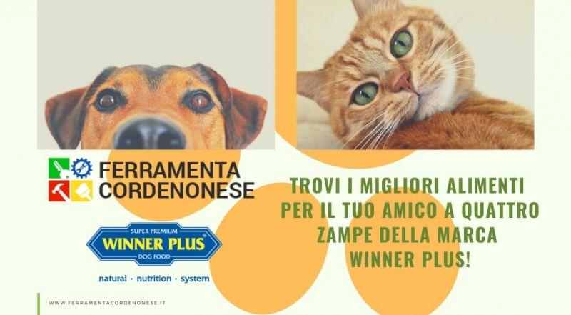 Vendita alimenti per gatti e cani winner plus a Pordenone - Occasione vendita di una vasta gamma di alimenti completi a Pordenone