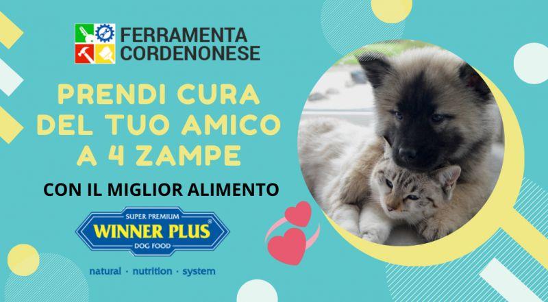 Vendita cibo per cani a gatti winner plus a Pordenone – Occasione alimenti per animali cane e gatto a Pordenone