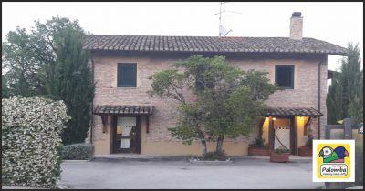 la nuova palomba offerta ristorante con giardino occasione locale con spazio allaperto