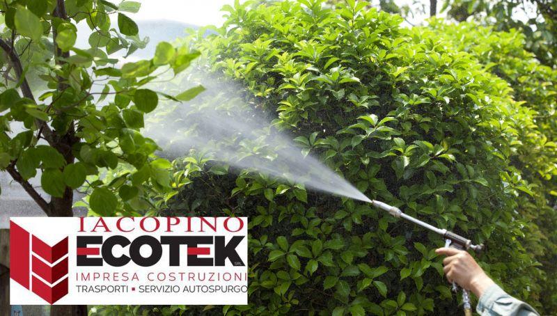 offerta disinfestazione ambientale reggio calabria - promo sanificazione ambientale reggio