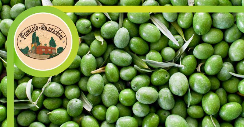 FRANTOIO BUZZICHINI - offerta produzione olio extravergine di oliva perugia