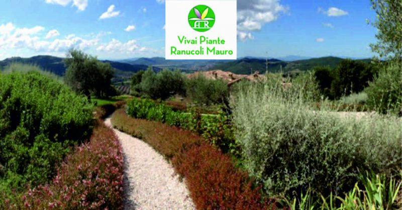 Ranucoli Vivai offerta realizzazione giardini - occasione manutenzione giardini