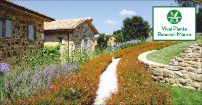 ranucoli piante offerta progettazione giardini occasione manutenzione spazi verdi perugia