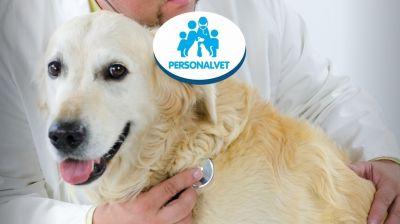 personalvet offerta clinica veterinaria e visite cliniche veterinarie