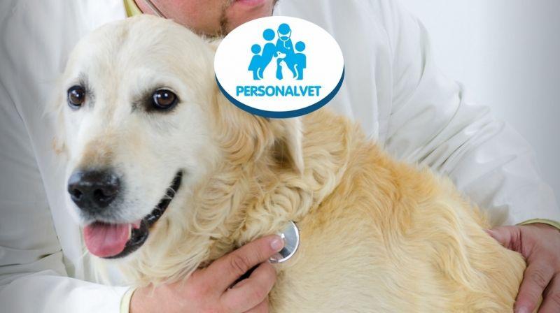 PERSONALVET - offerta clinica veterinaria e visite cliniche veterinarie