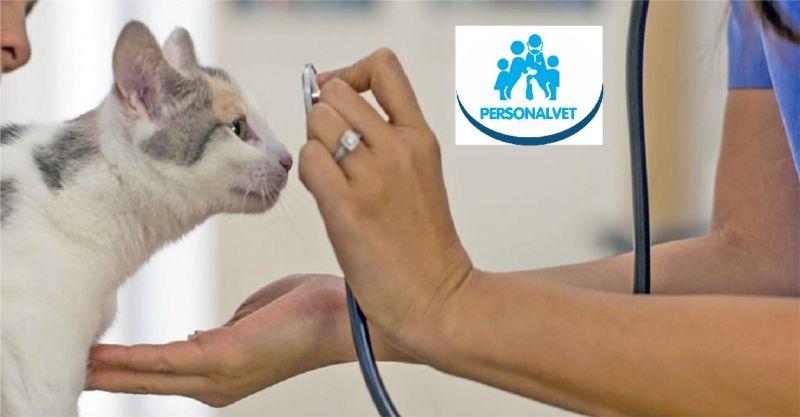 PERSONALVET - occasione visita veterinaria a domicilio e servizio veterinario a casa