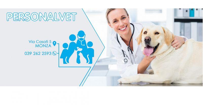 CLINICALVET - offerta pronto intervento medico veterinario e soccorso per animali