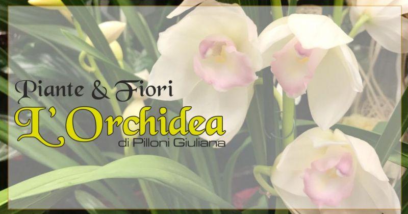 L'ORCHIDEA Decimomannu  offerta composizioni floreali eventi - promozione addobbi per eventi