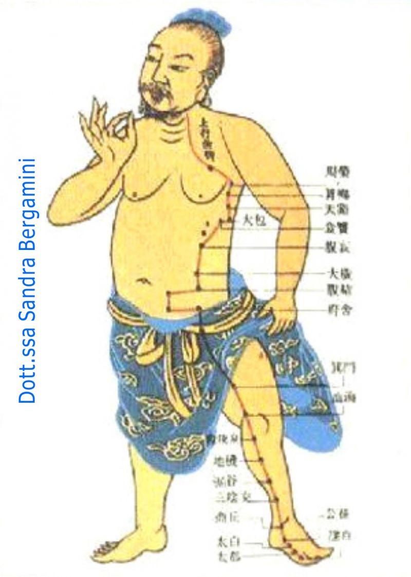 BERGAMINI DR SANDRA offerta agopuntura Rovigo - occasione medicina tradizionale cinese Rovigo