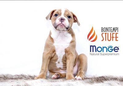 azienda bontempi bruno offerta alimenti per animali monge promo cibo secco per cani monge