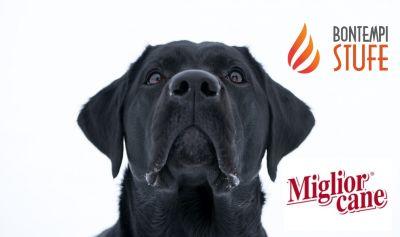 azienda bontempi bruno offerta miglior cane alimenti specifici per animali monoporzione cane