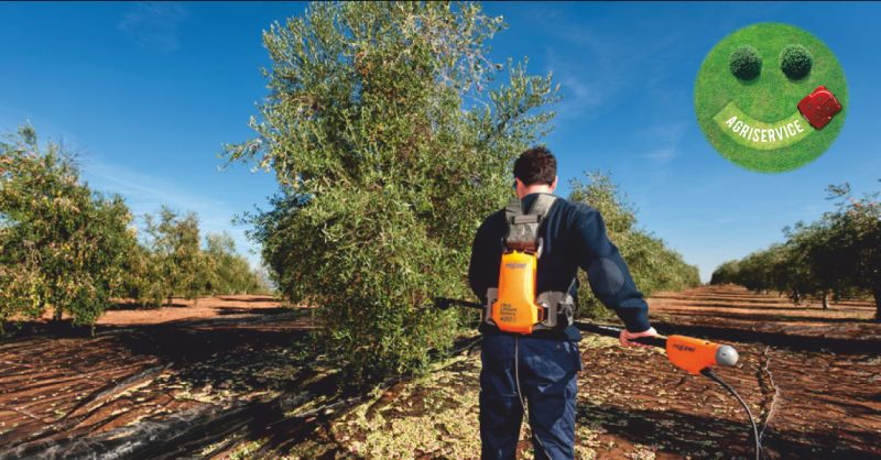 agriservice offerta motoseghe - occasione materiale potatura olivi e viti perugia