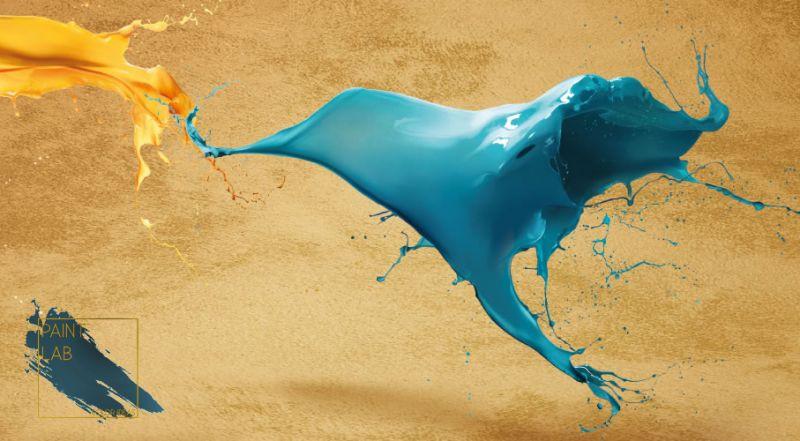 Paint Lab offerta decorativi murali per interni - occasione pitture per interni Napoli